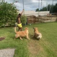 戏耍汪星人!内马尔后院带球遛狗